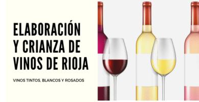 elaboración y crianza de vinos de rioja