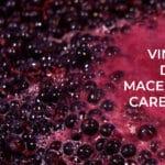 que son los vinos de maceración carbónica?